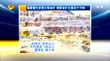 福建德化发现储量近千万吨金矿