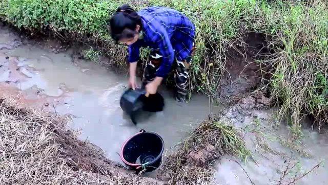 实拍:农村姑娘在水沟里舀水捉鱼