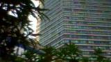 李丹阳视频机 QQ523171216