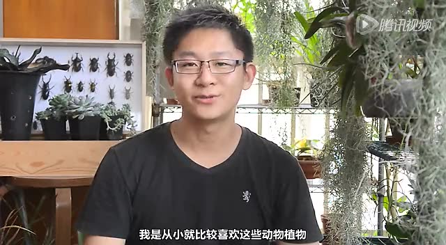 """【大成小视之秘境】03期:""""虫哥""""郭陶然截图"""