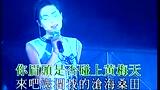 王菲 - 脸(LIVE)(L)