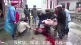 微信小视频一只愤怒的猪:被杀死时绝命一踢,把人踢飞了