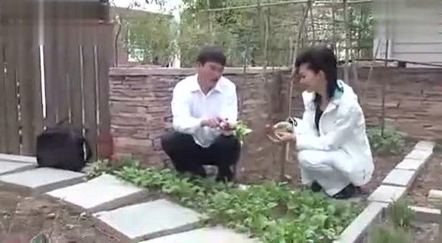 朱之文到于文华的院子拔萝卜 感觉他俩好亲密!图片
