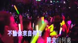 刘德华 - 中国人(2010 Live)