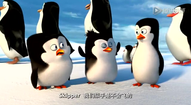 企鹅蛋卡通简笔画