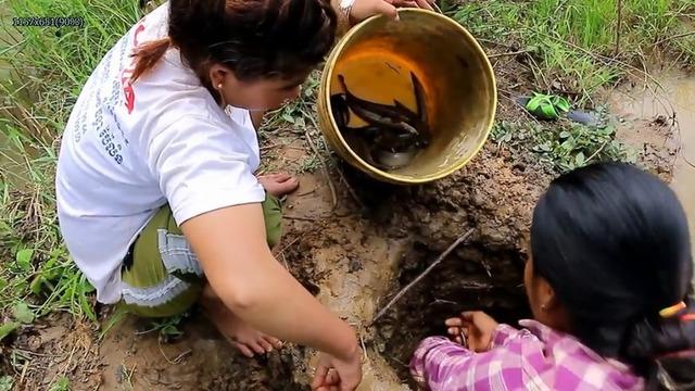 如何使用陷阱捕捉鳝鱼?