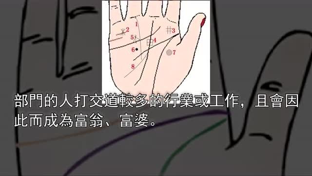 从掌纹看健康_从手相生命线长短看是否健康长寿