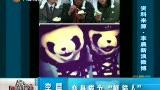 """李晨:变身成为""""熊猫人"""""""