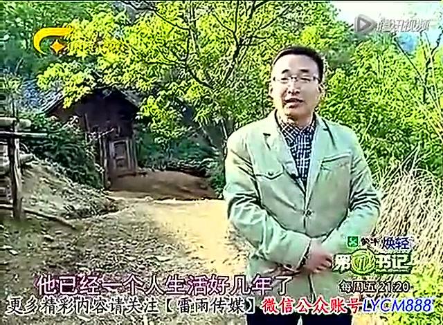 杨六斤_吃野菜的杨六斤