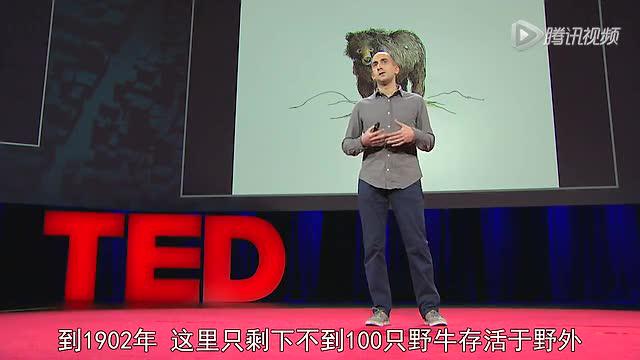 乔恩·莫阿拉姆:泰迪熊如何教会我们同情?