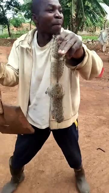 偷拍非洲人_非洲人抓到一只好货,向国人讲述高兴坏了,终于有个肉可以吃了