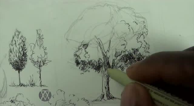 風景速寫樹的畫法 alphonso dunn - 叁伍畫室