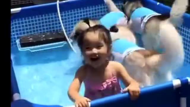 日本幼女的片子在哪�_日本小女孩和3只哈士奇在玩水 可以这很夏天