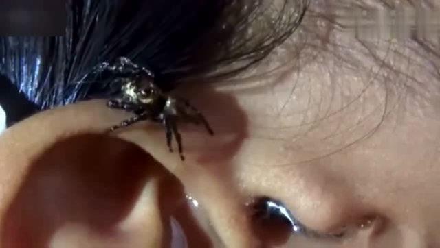 水漫逼女_水漫进耳洞 竟然逼出一只大蜘蛛