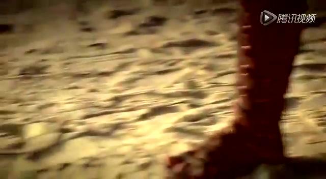 柳岩美国度假_女星海滩拍写真与男模打闹 捂胸不慎泄春光_时尚_腾讯网