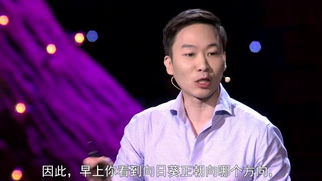Jinsop Lee:五感设计