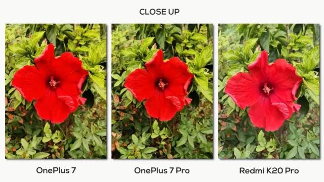红米K20 Pro、一加7 Pro、一加7拍照清晰度对比评测