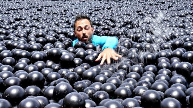 在10000个黑球里游泳,是种怎样的体验?