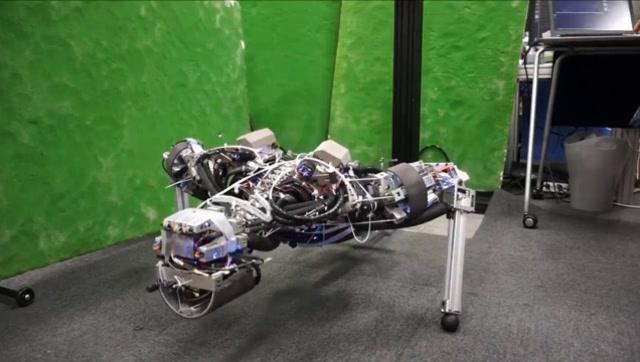 日本高科技创造出与众不同的机器人