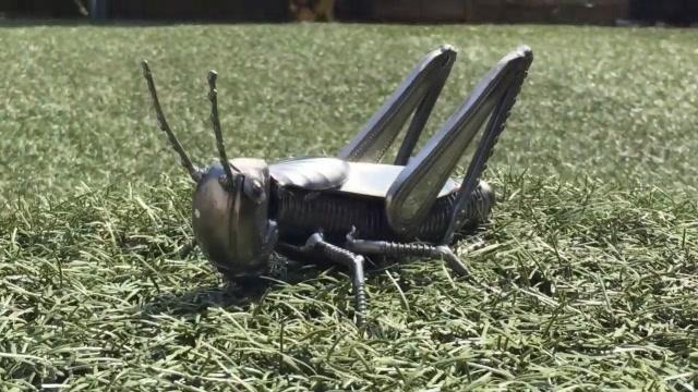 厉害了!牛人用废金属焊接了一只蚱蜢