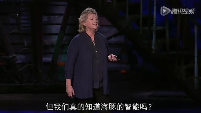 丹妮丝·赫兹:我们能说海豚语吗